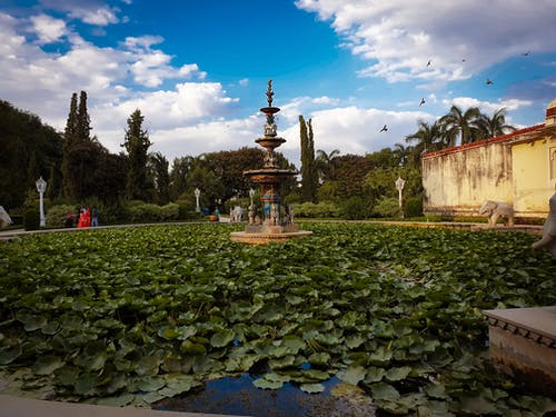 Free stock photo of city, rajasthan