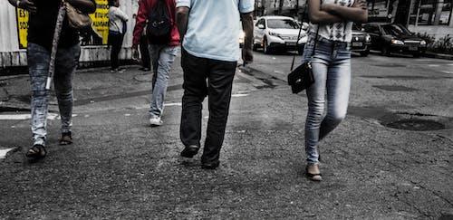 คลังภาพถ่ายฟรี ของ กลางวัน, กองกำลัง, ฉากในเมือง, ถนน
