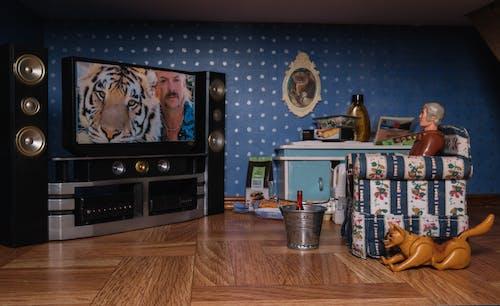 Бесплатное стоковое фото с в помещении, Взрослый, дерево, дизайн интерьера