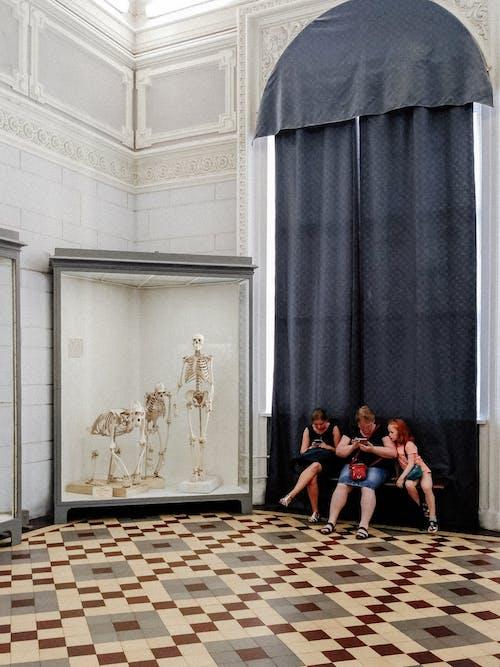 博物館, 坐, 女人, 女孩 的 免費圖庫相片