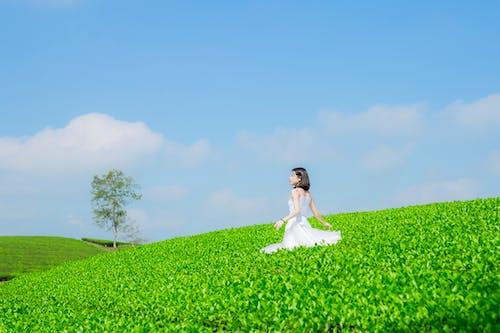 Gratis lagerfoto af attraktiv, blå himmel, dagtimer