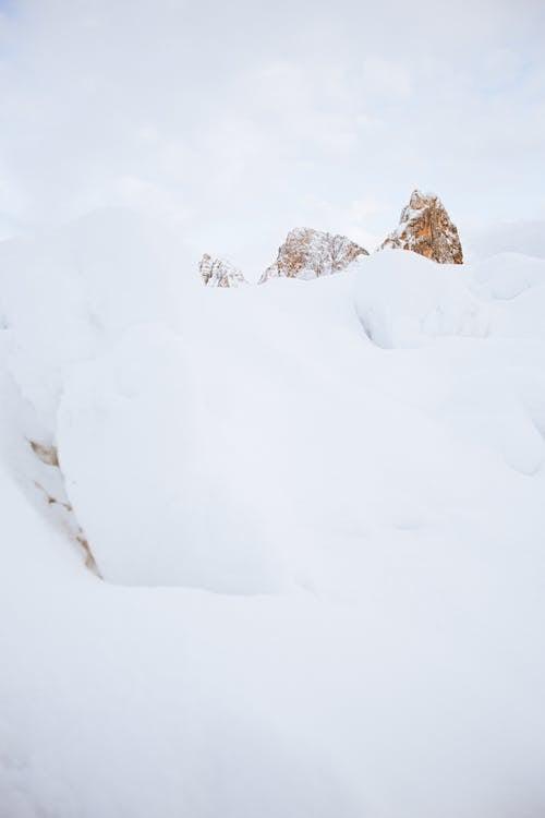 Безкоштовне стокове фото на тему «HD шпалери, замерзання, замерзати, заморожений»