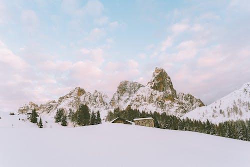 4Kの壁紙, HDの壁紙, アイスの無料の写真素材