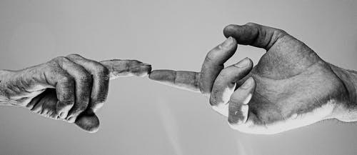 Monochrome Photo Of People's Hand