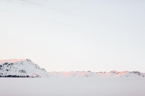Fotobanka sbezplatnými fotkami na tému chladný, deň, denný čas, fotografia prírody