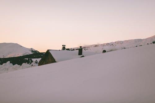 コールド, 冬, 冬の風景, 冷たいの無料の写真素材