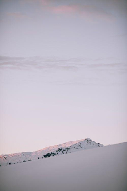 Fotobanka sbezplatnými fotkami na tému chladný, fotografia prírody, idylický, mráz