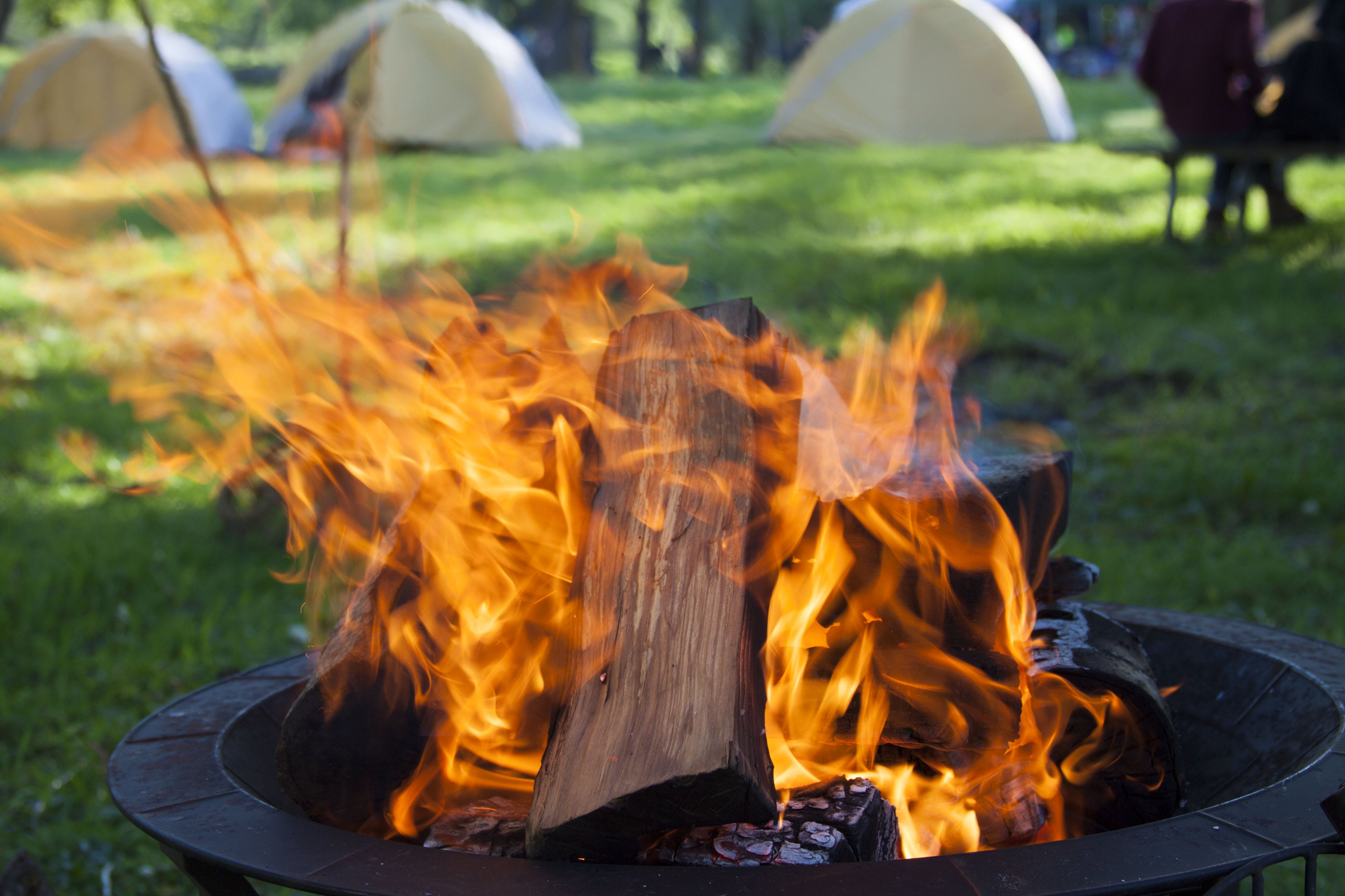 of campfire, fire, fire pit, firewood