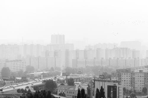 スロバキア, ブラチスラバ, 白黒の無料の写真素材