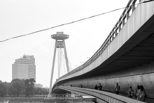 スロバキア, ブラチスラバ, ほとんどのsnp, 白黒の無料の写真素材