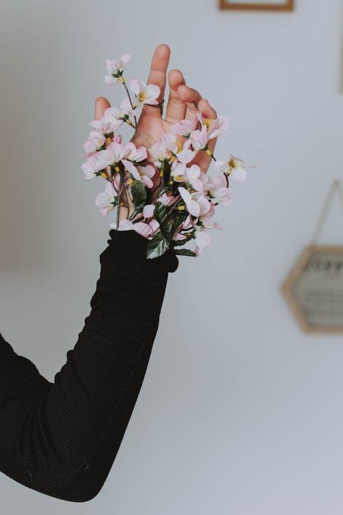 Бесплатное стоковое фото с длинные рукава, женщина, концептуальный, рука