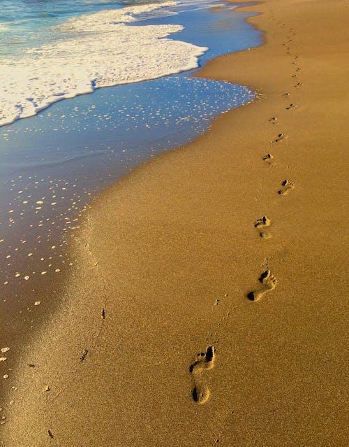 거품, 경치가 좋은, 모래, 모래로 뒤덮인의 무료 스톡 사진