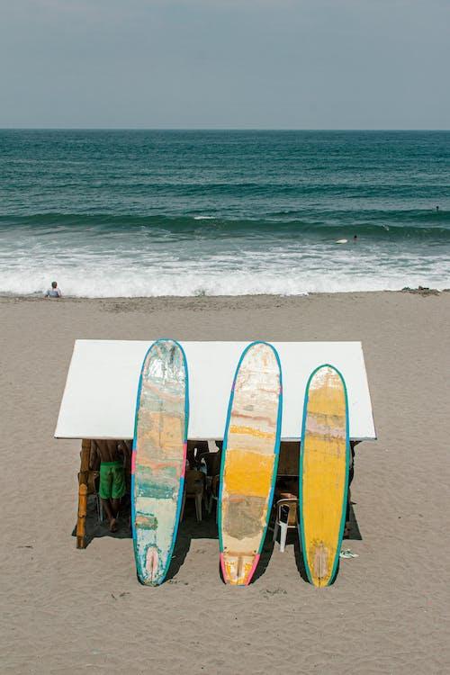 Three Surfboards on Beach
