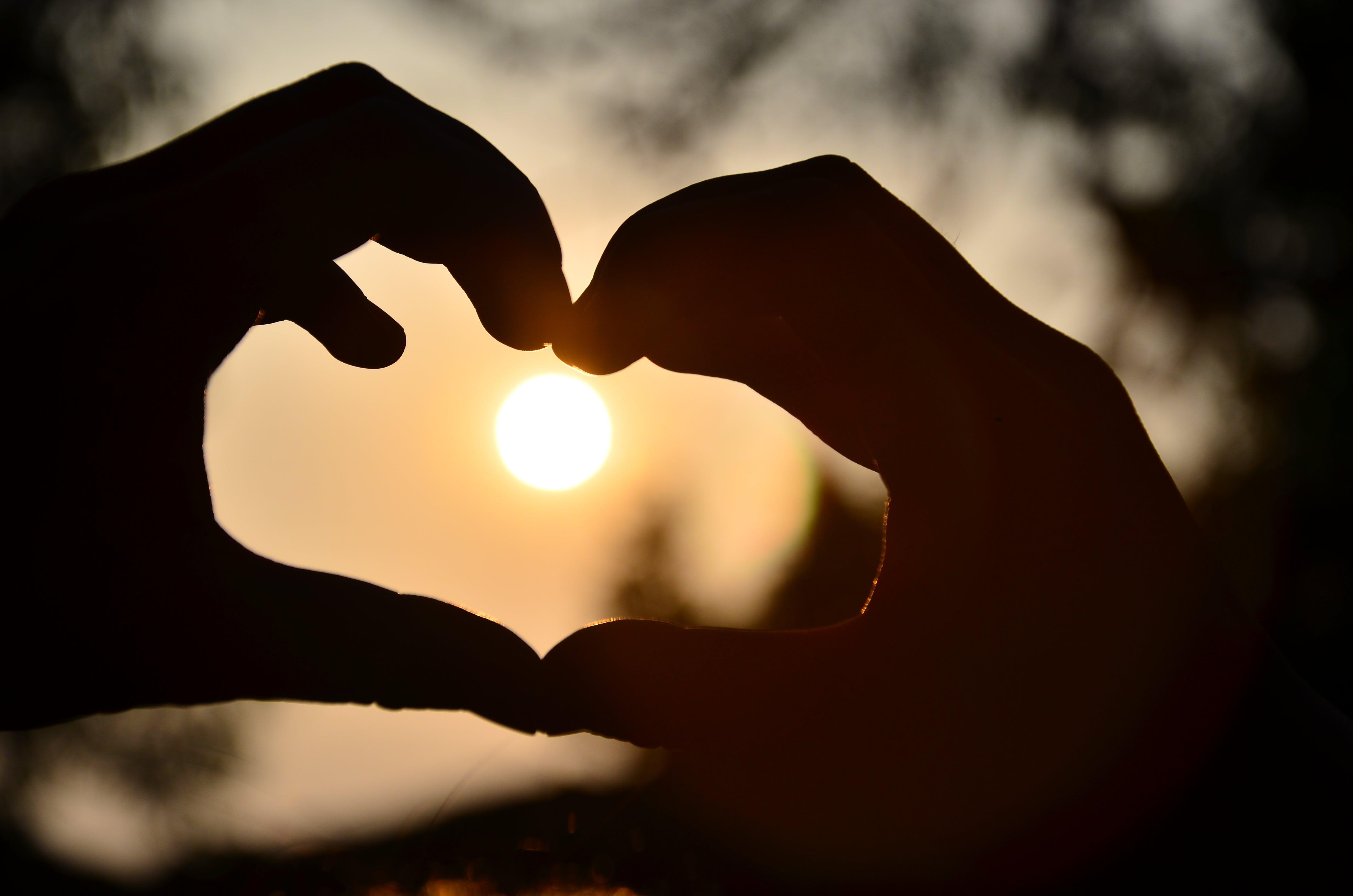 太陽, 心臓, 手の無料の写真素材