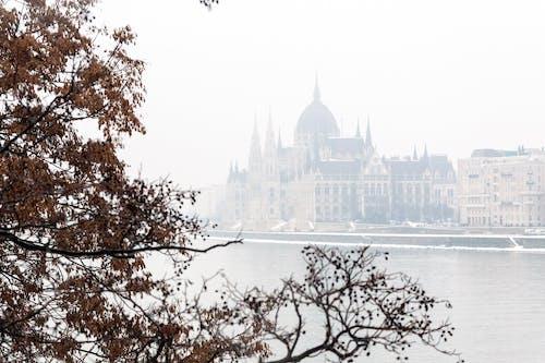 ドナウ川, ハンガリー, ブダペストの無料の写真素材