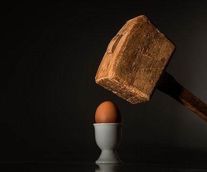 Brown Wooden Mallet Near Brown Chicken Egg