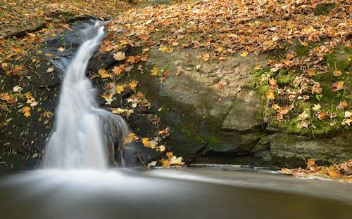 Photos gratuites de caillou, cascades, chutes d'eau, couler
