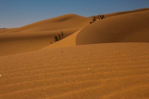 乾旱, 乾的, 冒險 的 免費圖庫相片