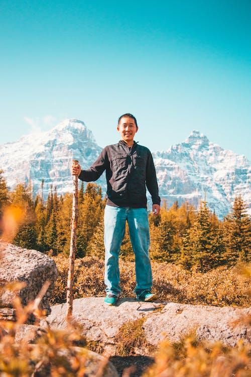 Photos gratuites de Alberta, arbres, automne