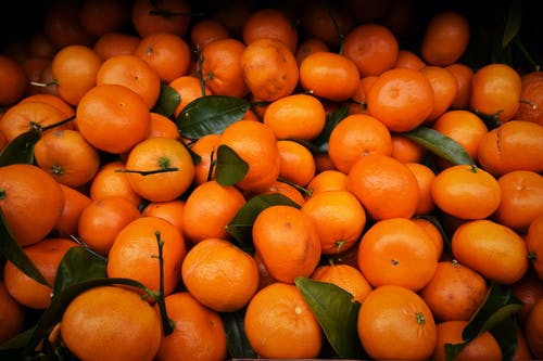 Orange Fruits in Macro Shot