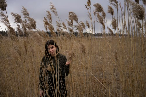 Woman in Black Long Sleeve Dress Standing on Brown Grass Field