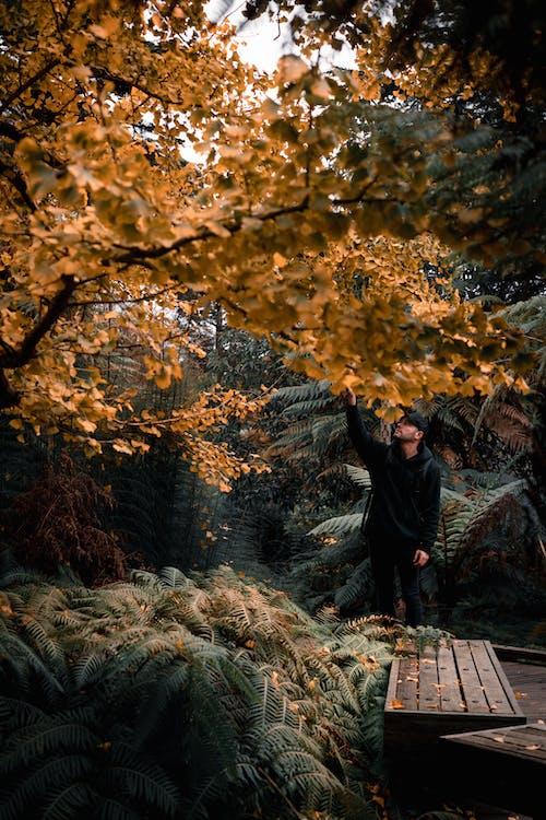 Man in Black Jacket Standing on Brown Dried Leaves