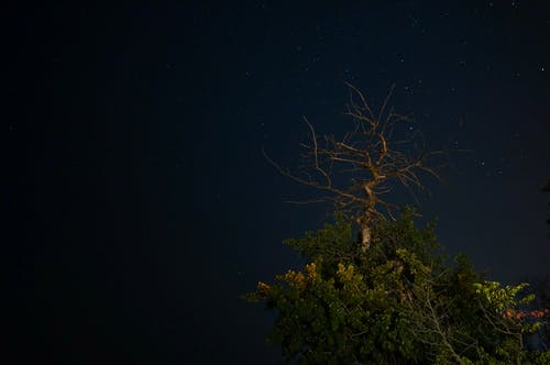 Free stock photo of astrophotography, dark, long exposure, room for copy