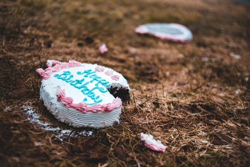 Happy Birthday Cake on Brown Dried Grass