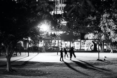 Free stock photo of basketball, brisbane, night city