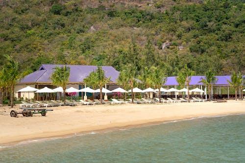 Empty Resort
