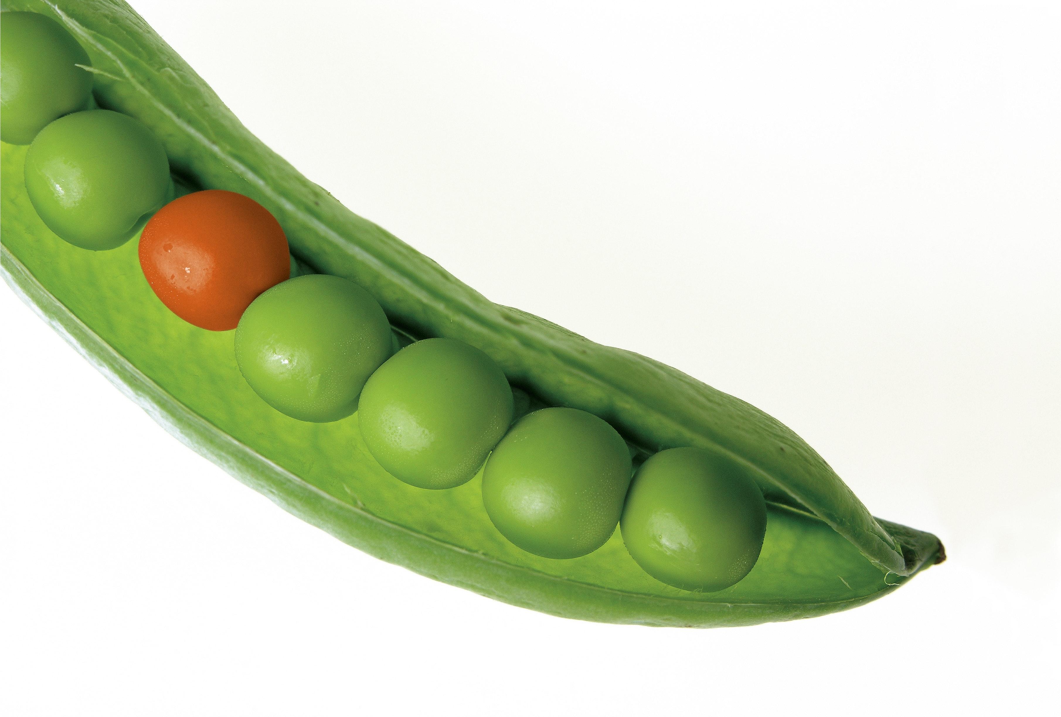Close Up Photography Of Green Pea Pod Free Stock Photo