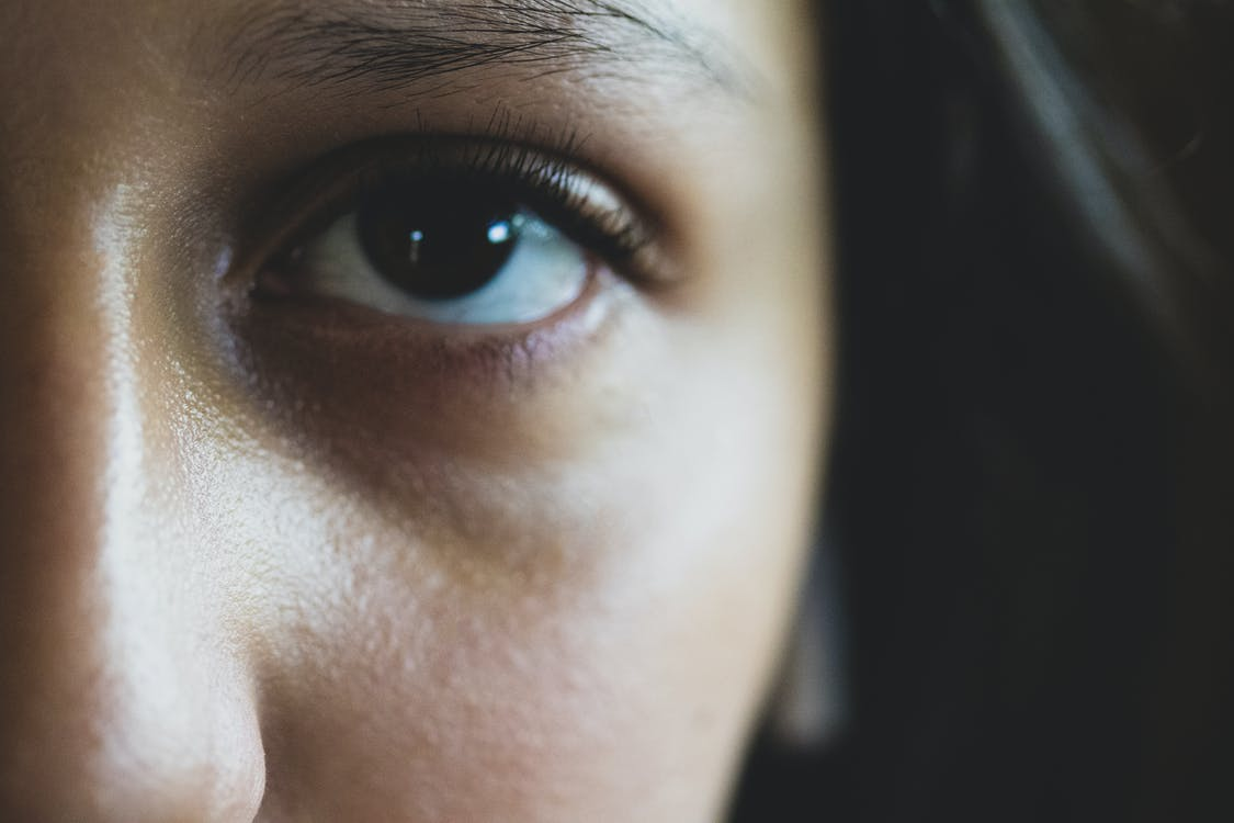 Free stock photo of close up, details, eyes