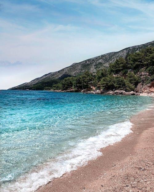 açık hava, ada, ağaçlar, boş zaman içeren Ücretsiz stok fotoğraf