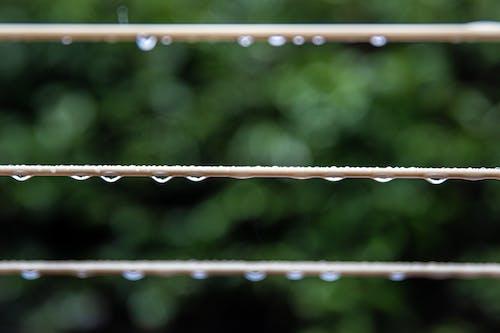 Brown Metal Fence in Tilt Shift Lens