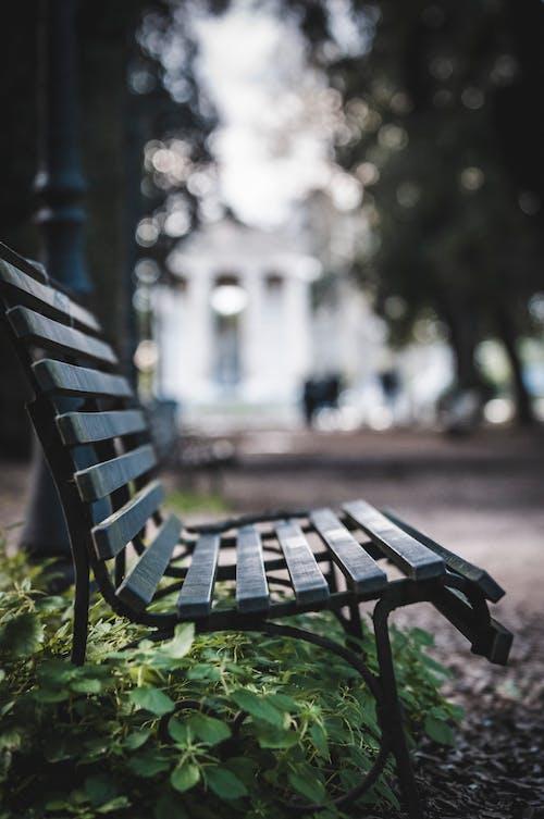 Foto profissional grátis de ao ar livre, assento, Banco, bokeh
