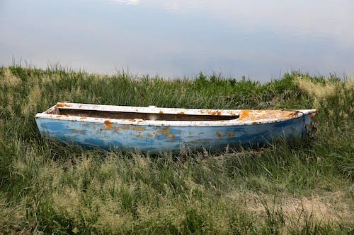 Free stock photo of barque, bateau, canot