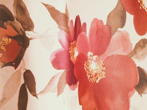 テクスチャ, パターン, 日光, 花の無料の写真素材
