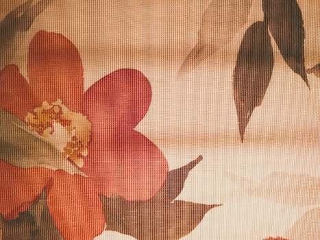 Free stock photo of pattern, texture, flower, fabric
