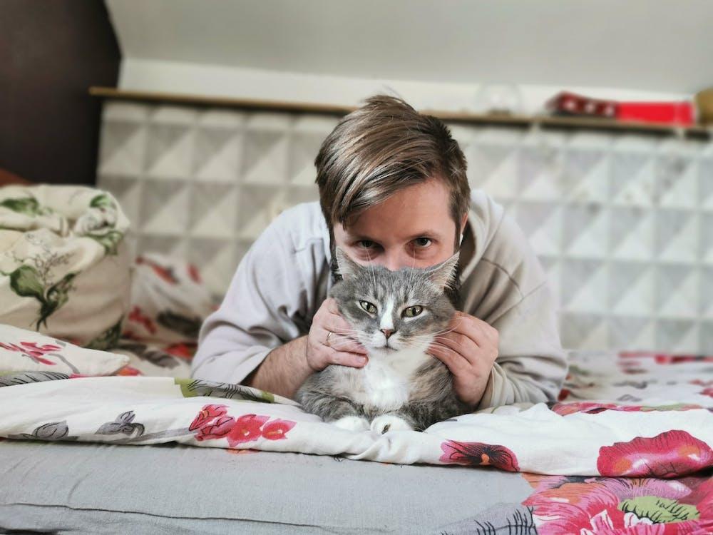 avslapping, bedårende, dyr