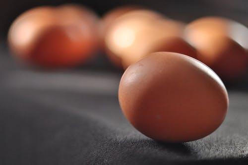Brown Egg on Black Surface