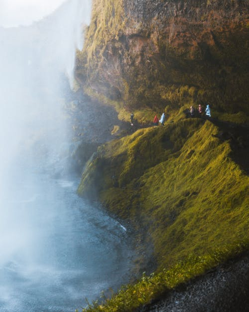 People Walking on Mossy Rock
