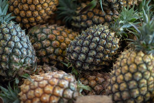 Bunch of Pineapple Fruits