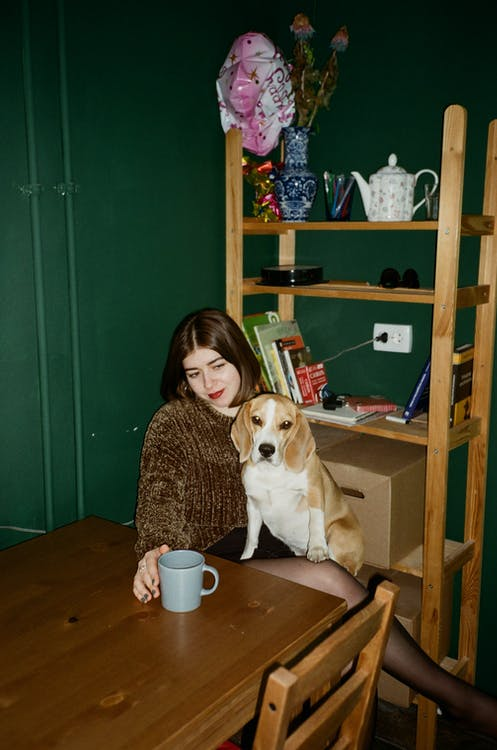Woman and Her Pet Beagle