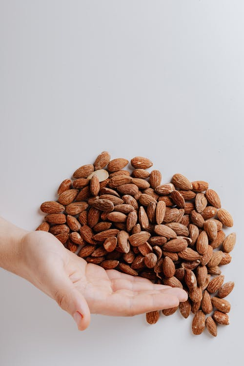 Brown Nuts on Persons Hand