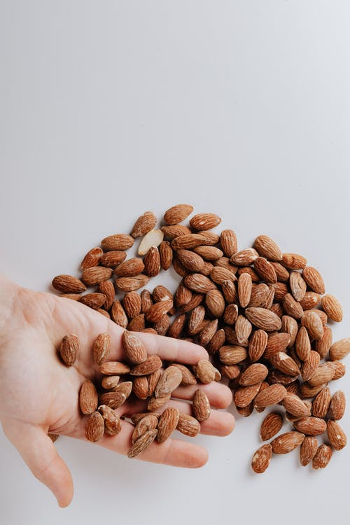 Brown Almond Nuts on Persons Hand