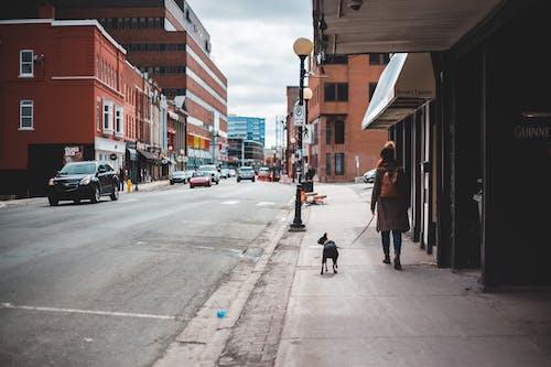 Woman in Brown Coat Walking on Sidewalk