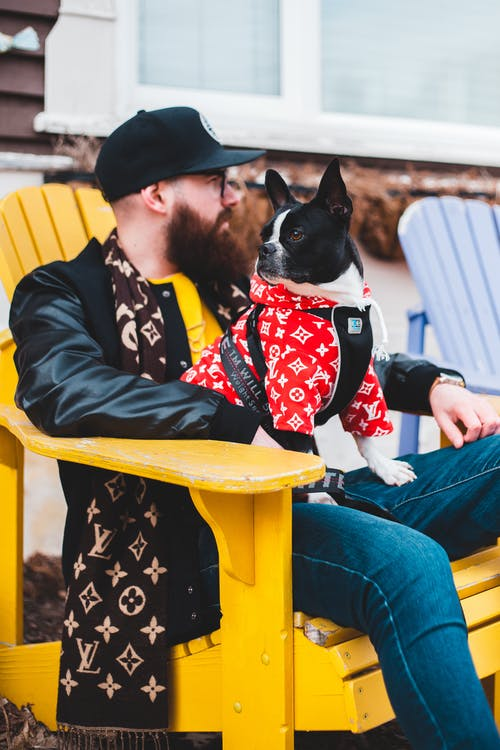 Man in Black Jacket and Blue Denim Jeans Sitting on Yellow Wooden Chair With Black and White Dog