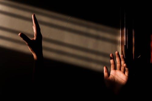Foto stok gratis dalam ruangan, diterangi matahari, gelap