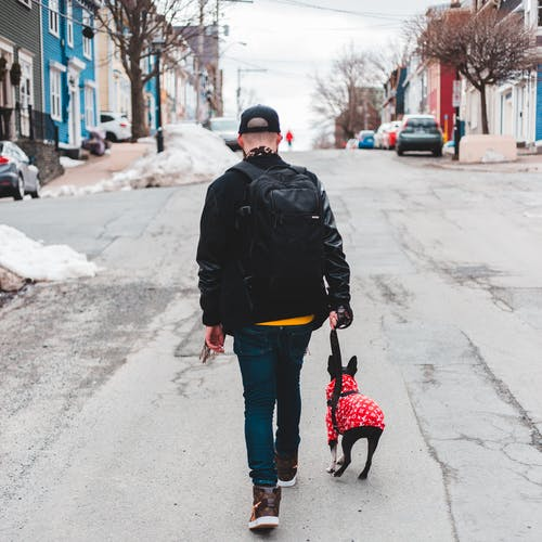 Man in Black Jacket and Blue Denim Jeans Walking With Black Dog on Road