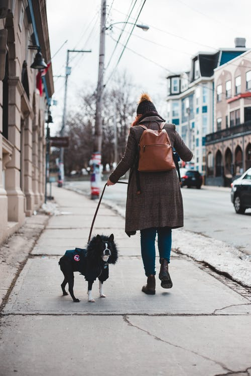 Woman in Brown Coat Walking With Black Dog on Sidewalk
